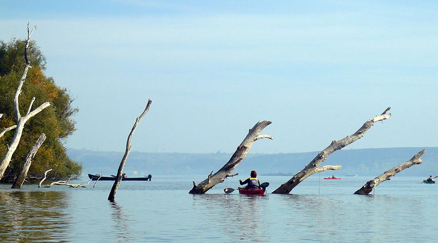 kayakmonkey.com_tudurinibros_2